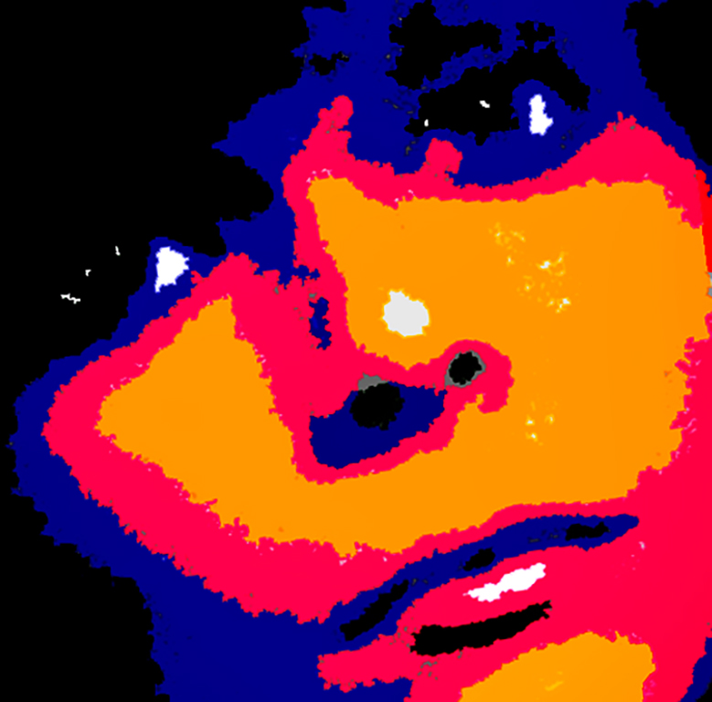 Young woman's face up close and personal yellow-orange royal blue black and fuchsia facial features extend over edges